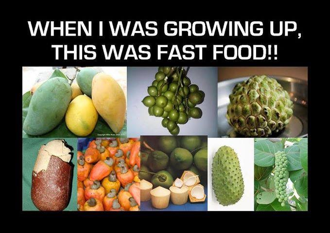 Before Organic Was a Thing…
